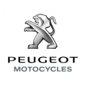 Pot d'échappement Akrapovic Peugeot