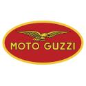 Pot d'échappement Zard Moto-Guzzi