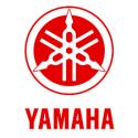 Pot d'échappement Zard Yamaha