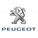 Pot d'échappement Scorpion Peugeot