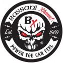 Pot d'Echappement BASSANI XHAUST Kawasaki